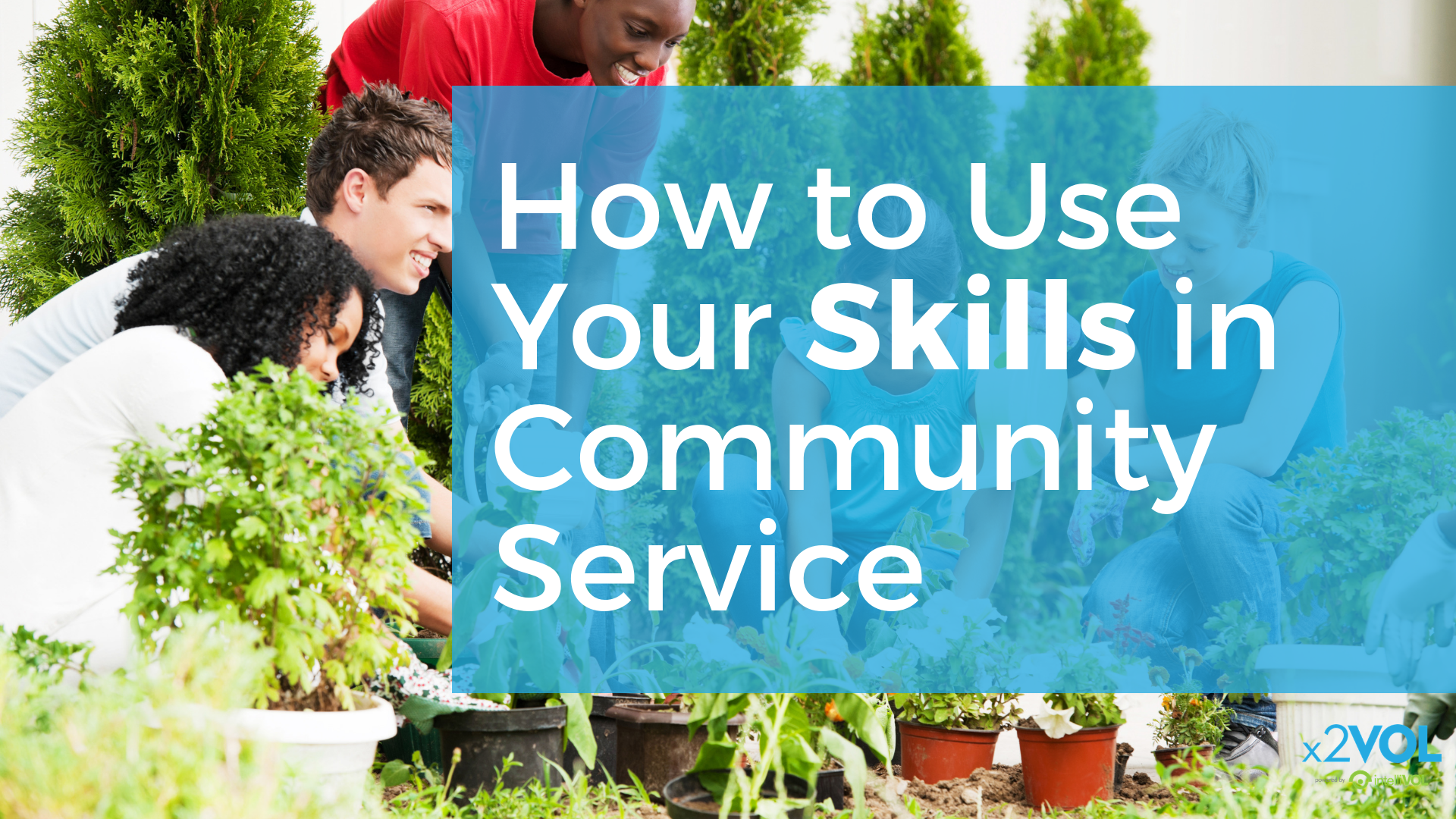 How to Use Your Skills in Community Service