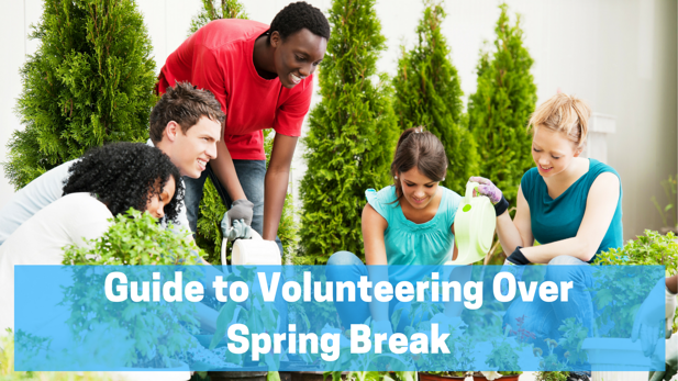How to Volunteer Over Spring Break