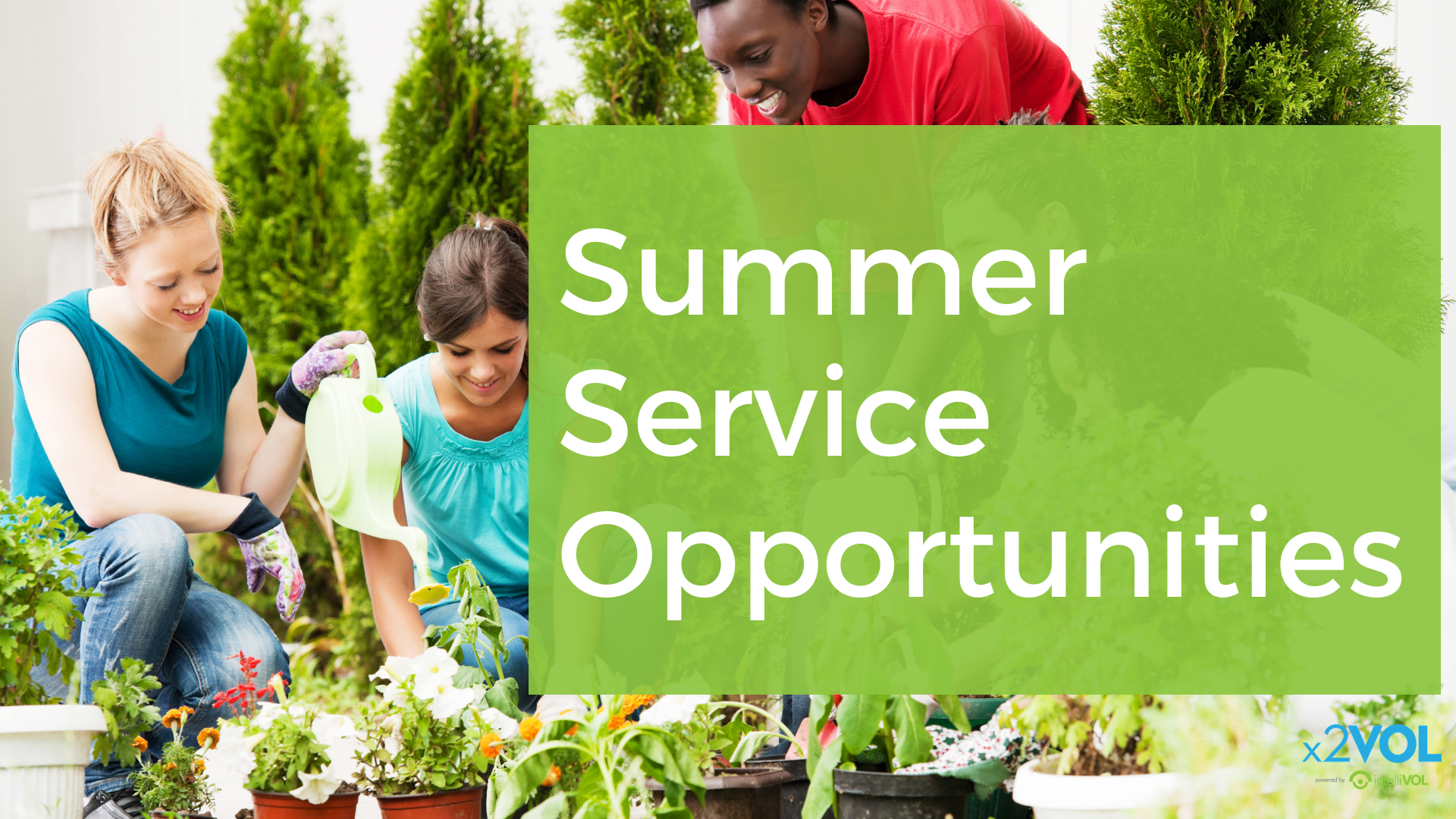 Summer Service Opportunities